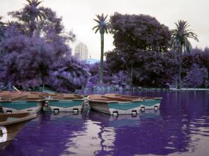 foto del Parque de la Ciudadela (Por: Corina M. V.)